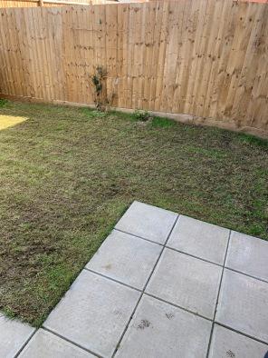 Before image of garden